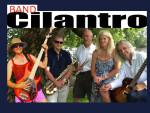 band-cilantro-treesub